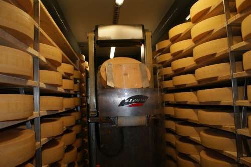 Cheese Storage Cheese Cheese Dairy