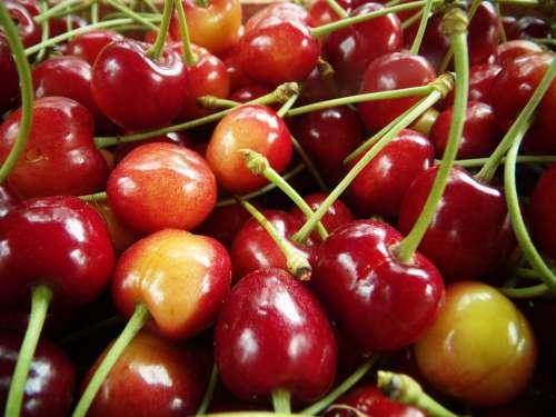 Cherries Red Macro Fruit Sweet