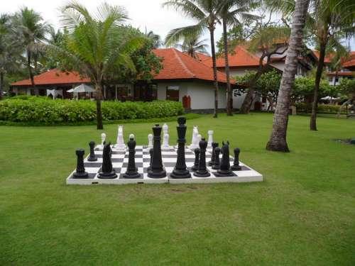 Chess Garden Games
