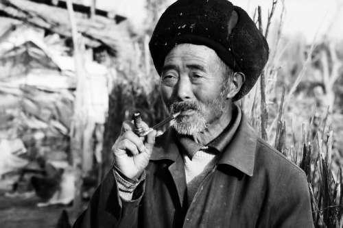 China Portrait Man Old Asia Beard