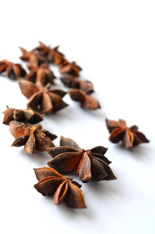 Chinese Star Anise Anise Illicium Verum Star Anise