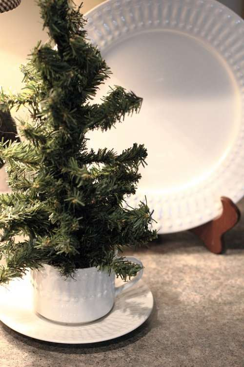 Christmas Pine Tree Winter Decoration Holiday