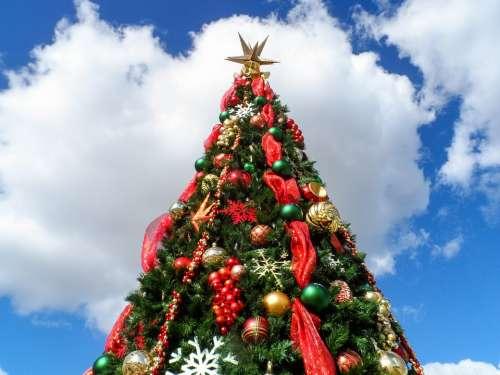 Christmas Tree Christmas Holiday Xmas Green X-Mas