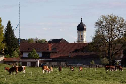 Church Onion Dome Baroque Upper Bavaria Rural