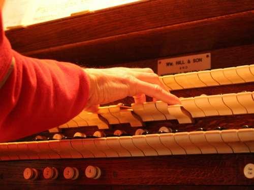 Church Organ Organ Pipe Organ Keyboard Keys Piston