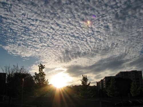Cirrocumulus Cirrus Clouds Sunset Sundown Sky