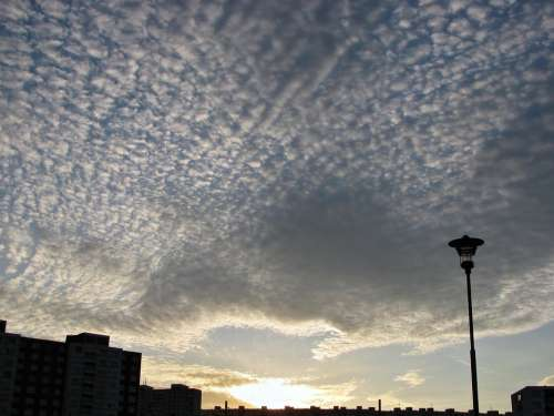 Cirrus Clouds Sunset Sundown Sky Cirrocumulus
