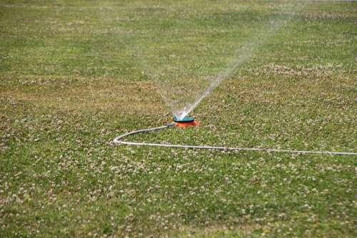 City Garden Grass Green Heat Spraying Sprinkler