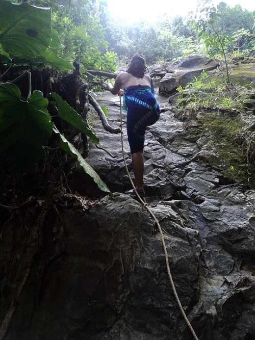 Climb Tropical Woman Rocks Rock Climbing Hike