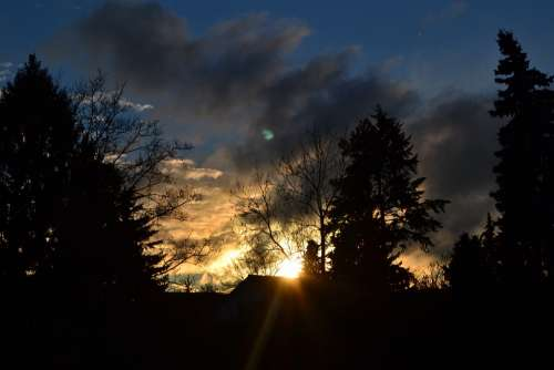 Clouds Blue Grey Afterglow Sun Rays Tree