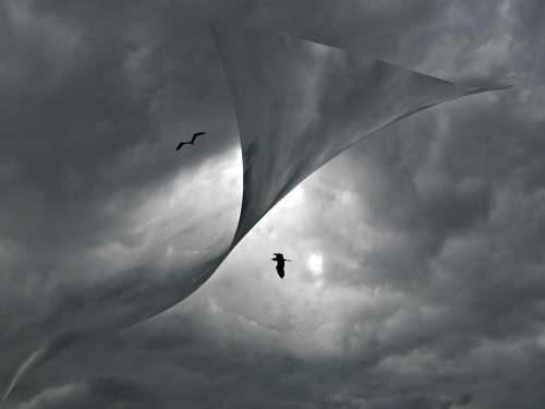 Cloudscape Birds Clouds Weather Gray Abstract