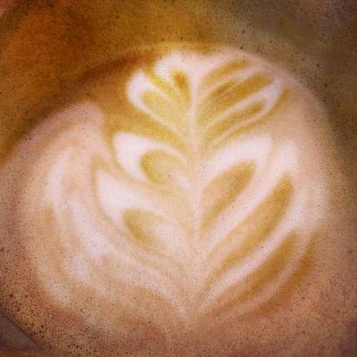 Coffee Breakfast Brown Cup