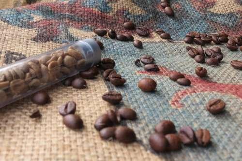 Coffee Coffee Beans Green Coffee Comparison