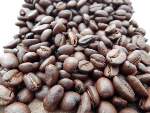 Coffee Beans Caffeine Mocha Roasted Breakfast