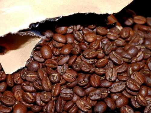 Coffee Bean Packaging Cafe Brown Coffee
