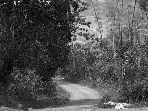 Colombia Rural Road Mountain Rural Landscape Field