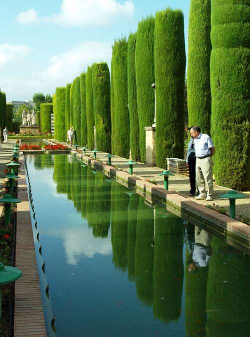 Cordoba Pond Water Vegetation Trees Gardens