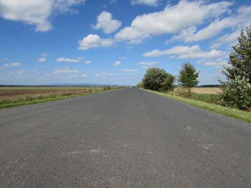 Country Road Side Street Dirt Track Road Asphalt