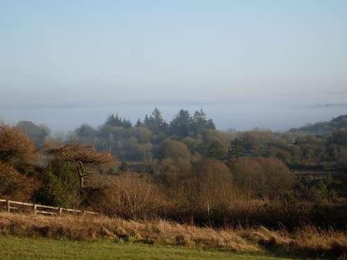 County Sligo Countryside Forest Landscape Sligo