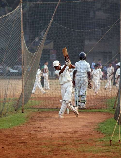 Cricket Batsman Ball Game India Competition Player