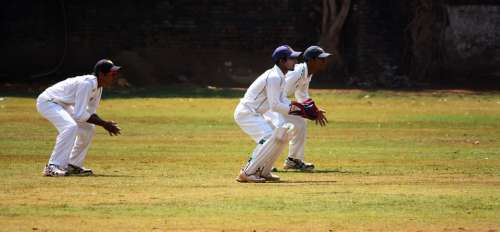 Cricket Wicket Keeping Practice Ball Game India
