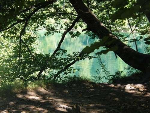 Croatia Plittvice Lake Magic
