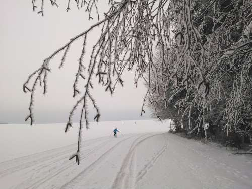 Cross Country Skiing Long Skiing Tracks Ski Trails