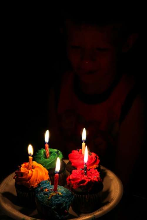 Cupcake Food Celebration Birthday Party Children