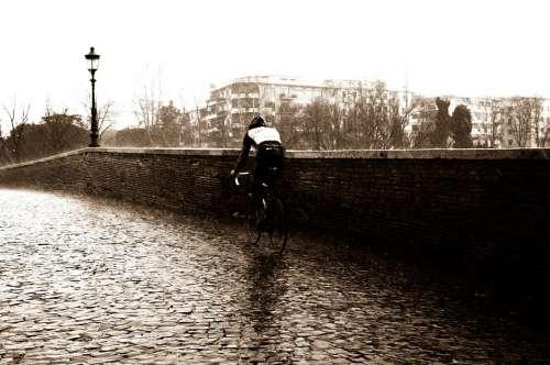 Cyclist Sports Bicycle Rain Rainy Rainy Day