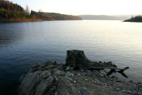 Dam Lake Stump Slezská Harta