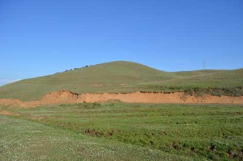 Dashanbao Prairie Green