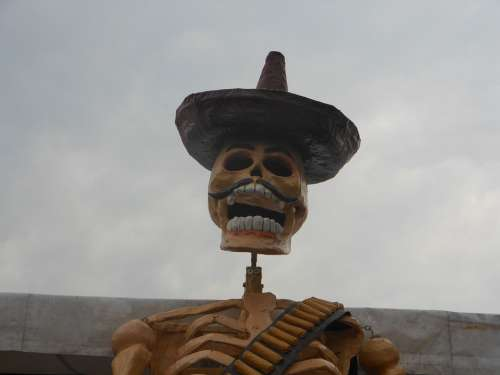 Day Of The Dead Mexico Skeleton Whiskers