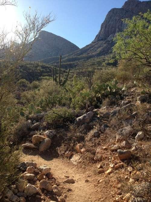 Desert Trail Arizona