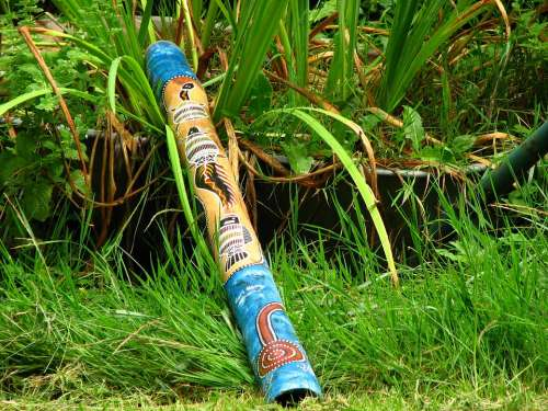 Didgeridoo Blowgun Musical Instrument Australia