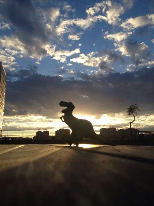 Dinosaur Sky Backlight Sunset