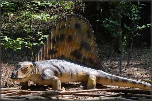 Dinosaurs Prehistoric Animal Amersfoort Predators