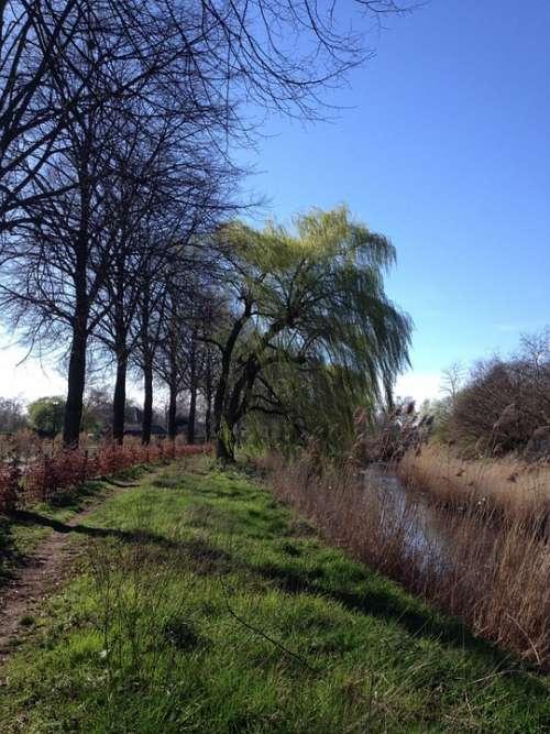 Dommel Valley Spring Wind
