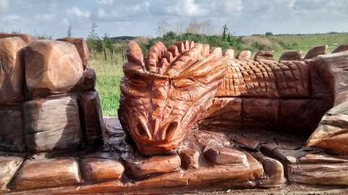Dragon Wooden Wood Carving Red Fallen Tree