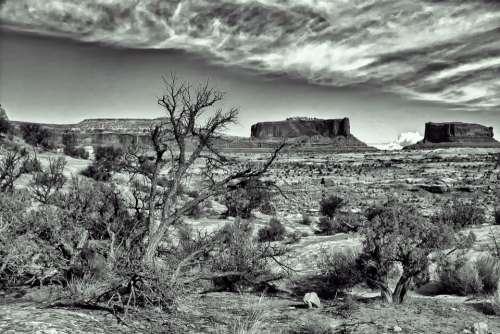 Dramatic Spooky Desert Landscape B W Rock