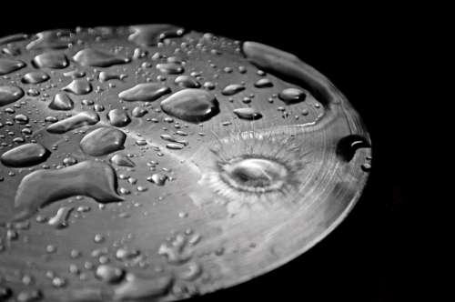 Drop Drops Rain Water Macro Background Seasons