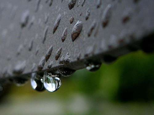 Drops Dew Or Rain Landscapes Nature