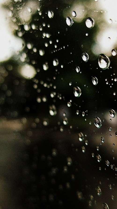 Drops Rain Water Pearls Bubble Beautiful Window