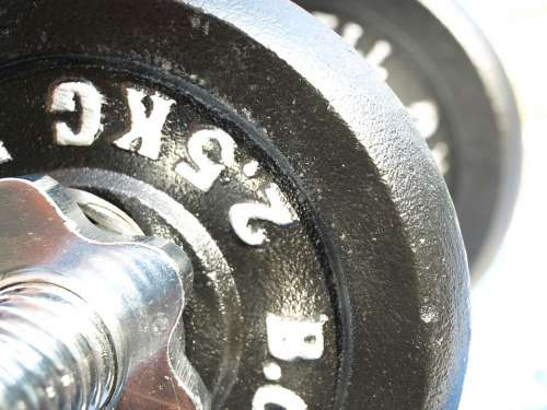 Dumbbells Weight Plates Strength Training Fitness