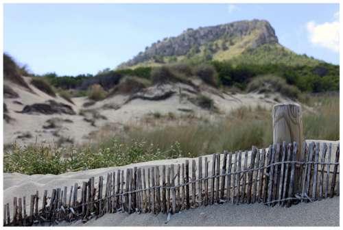 Dunes Sand Fence Nature Mallorca Blue Summer