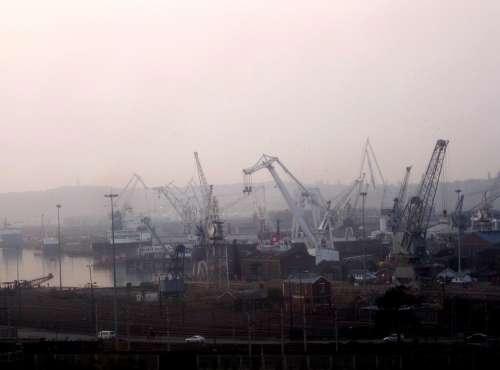 Early Morning Dawn Fog Cranes Lilac Sky Busy