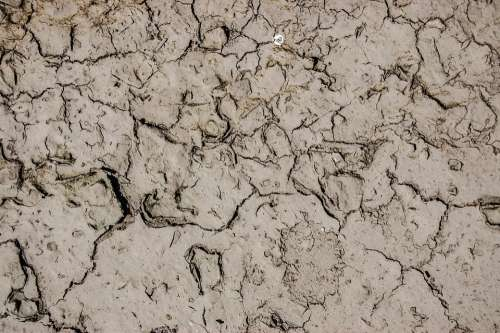 Earth Texture The Background Dry Cracked Drought