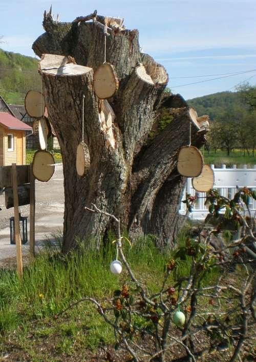 Easter Tree Easter Tree Stump Hung Tree Grates