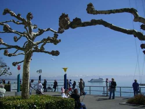 Easter Walk Lake Constance Sycamore Promenade