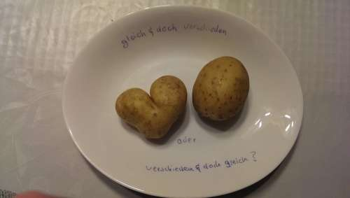 Eat Love Proverbs Potato Equal Unequal
