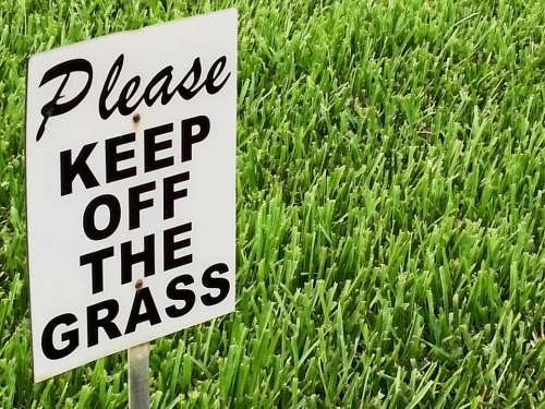 Ecology Protection Environment Sign Grass Summer